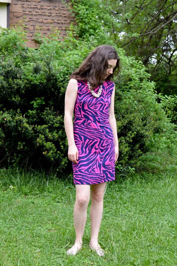The Zebra Dress